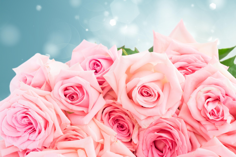 Днем рождения, розовые фото открытки