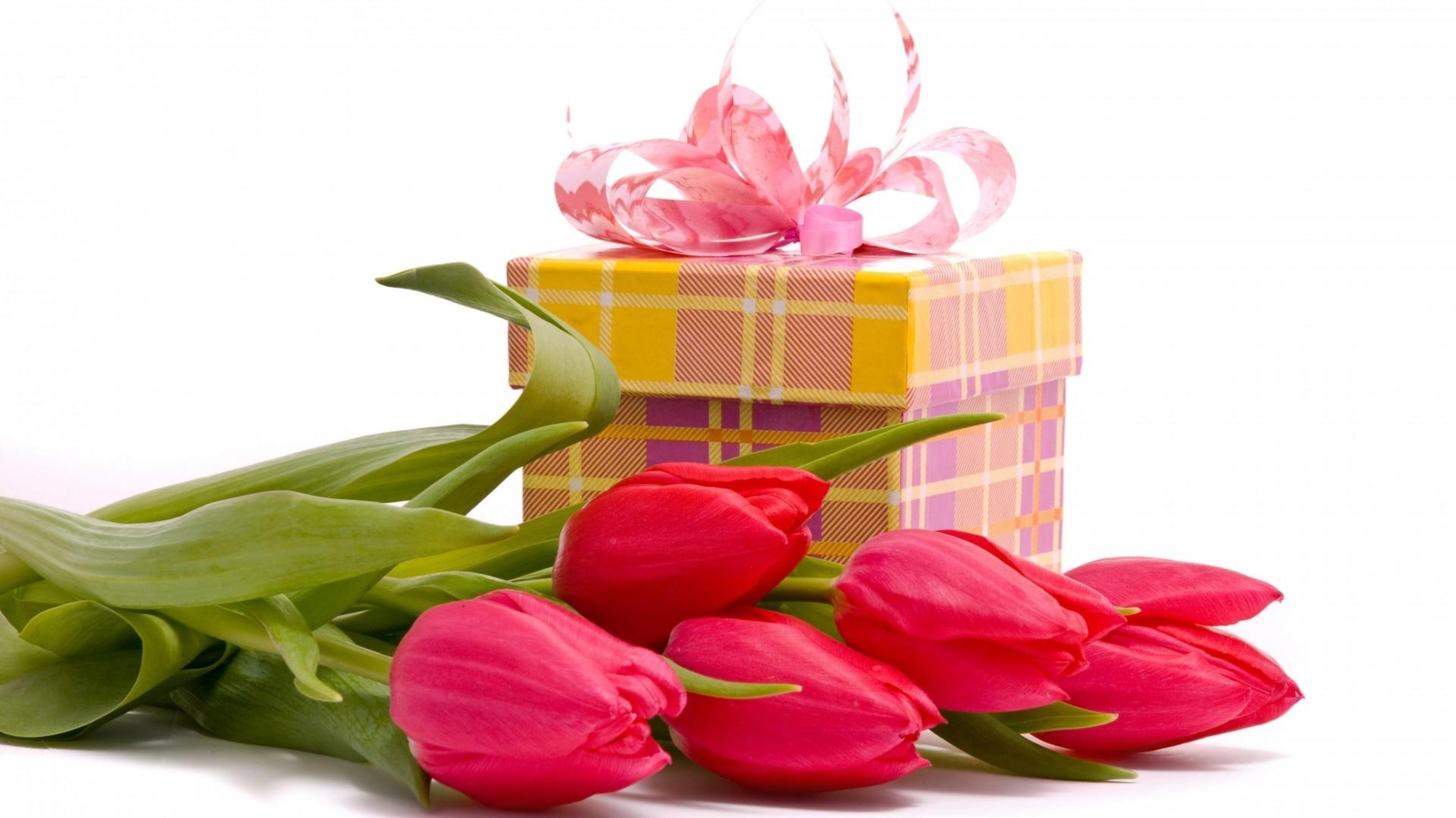 Поздравления с днем рождения тюльпаны картинки