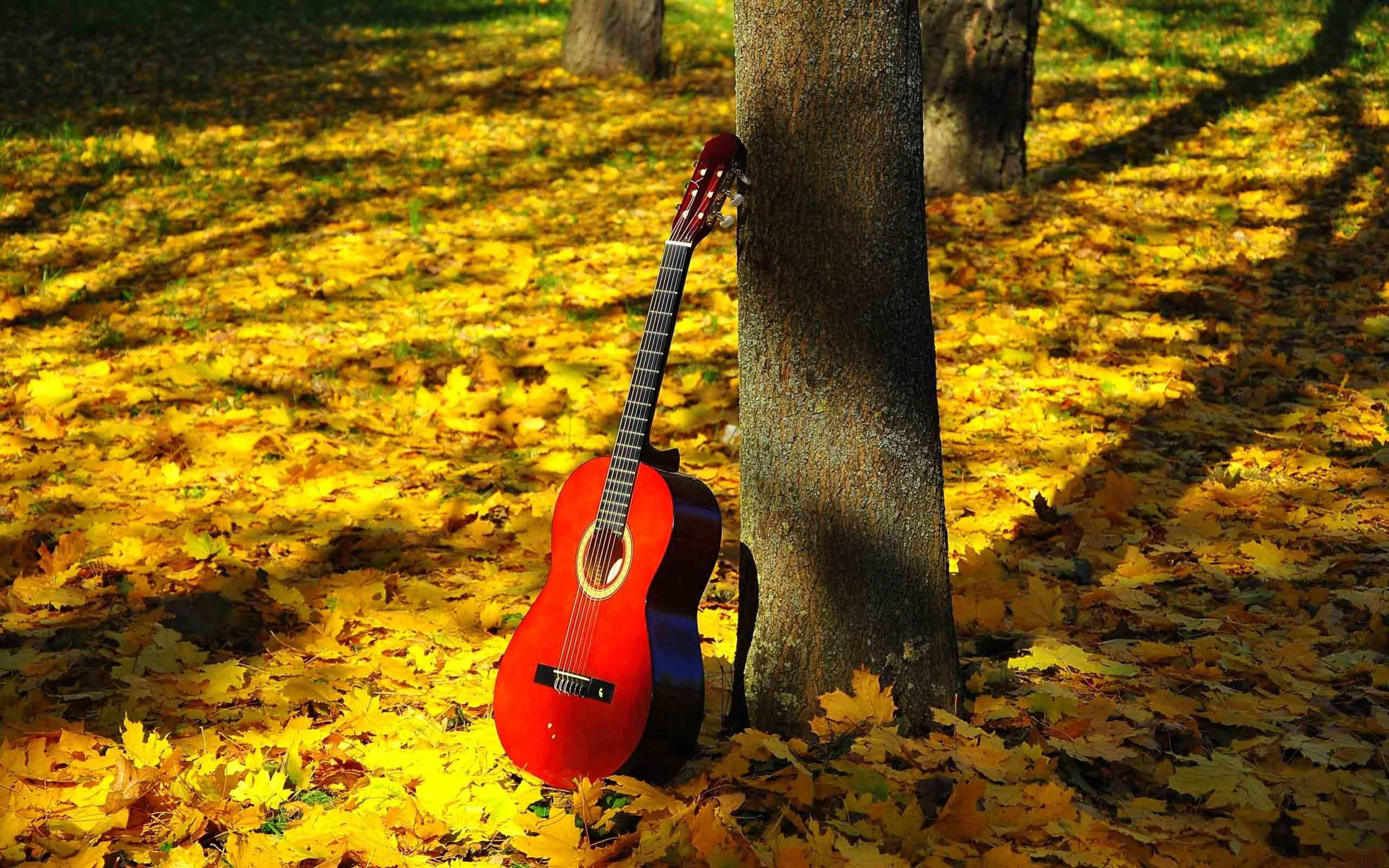 Картинка осень гитара