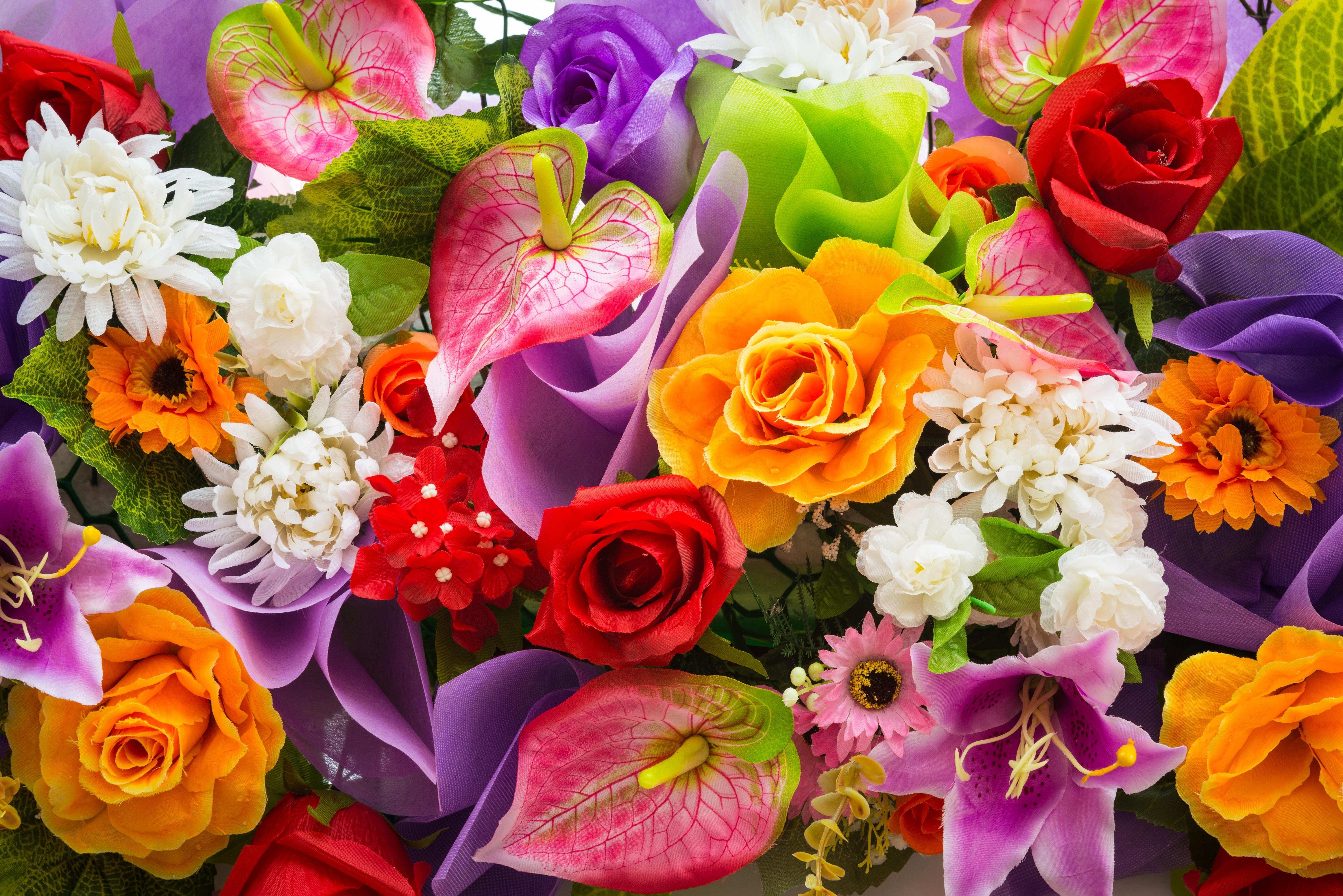 Открытка с крупными цветами