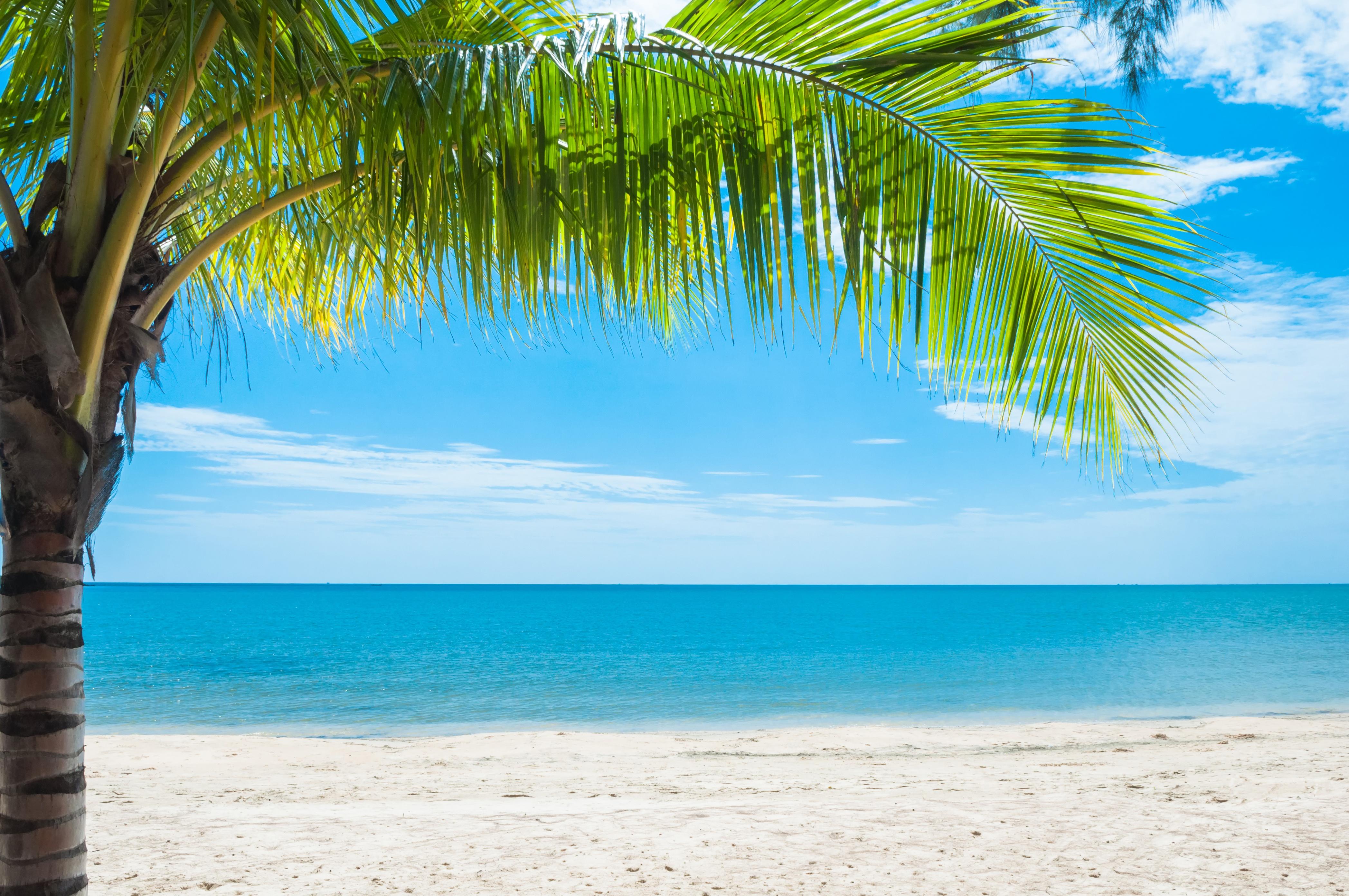 видео пляж картинки красивые обои легко