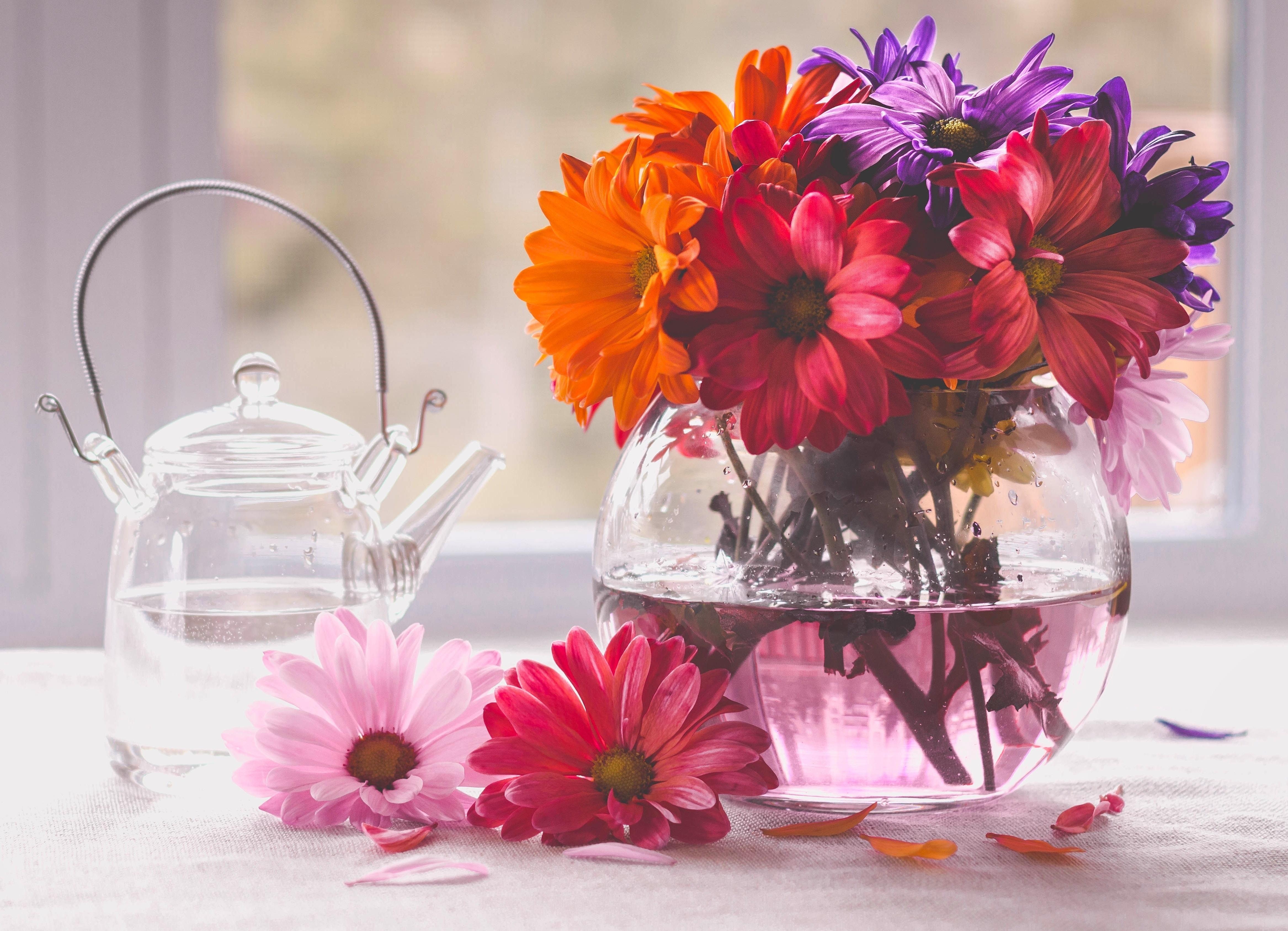 Цветы в вазе картинки на рабочий стол
