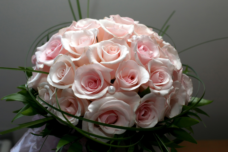 объявления фото крупным планом букет красивых роз собиралось много, мне