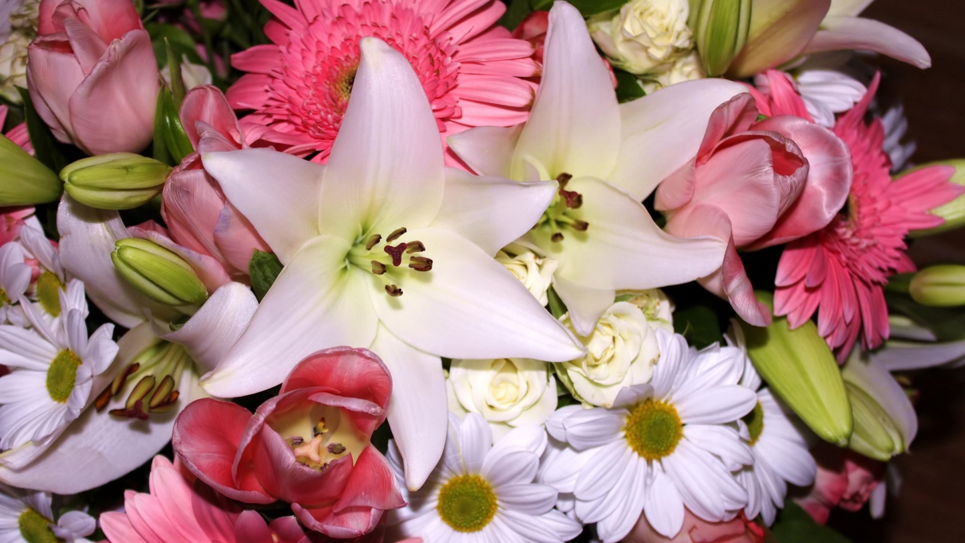действительности, такой красивые картинки с лилиями разные важно