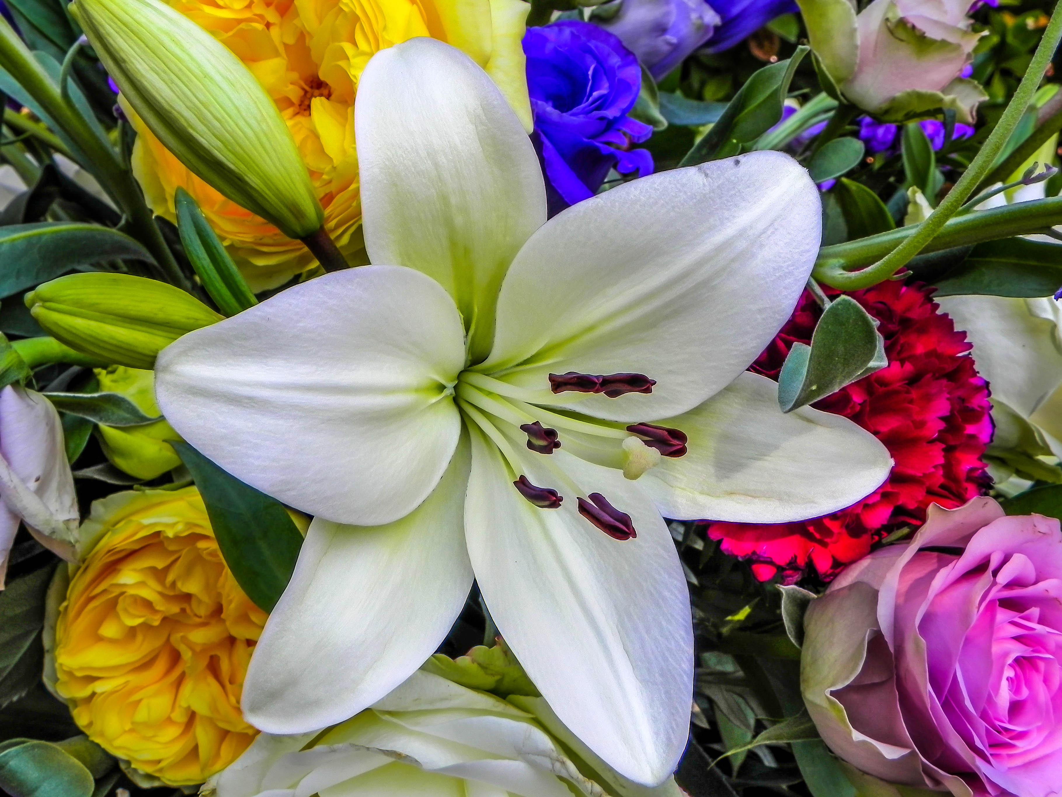 расположен цветы лилии огромный букет картинки представляет собой мини