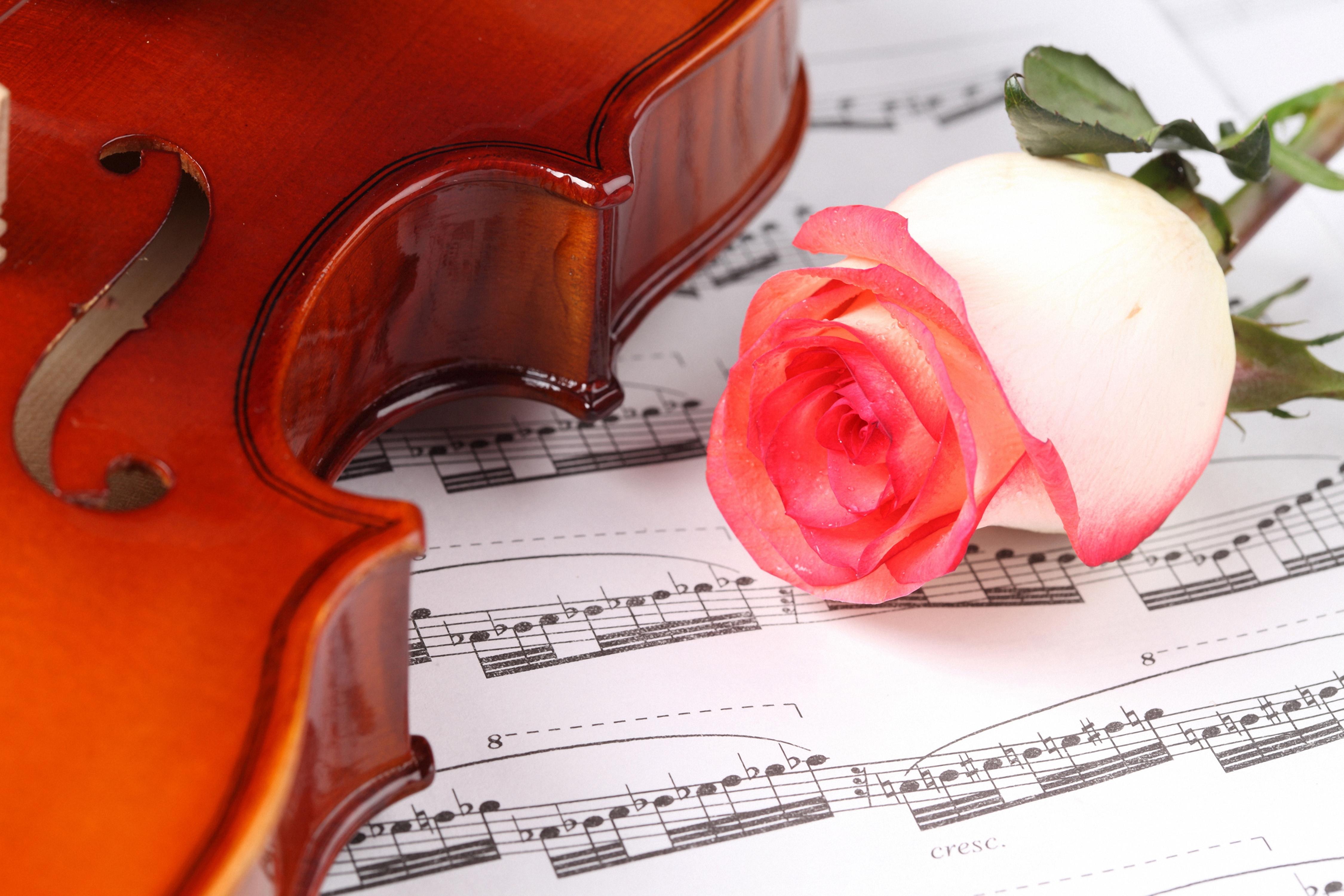 Картинки красивые музыка и ноты