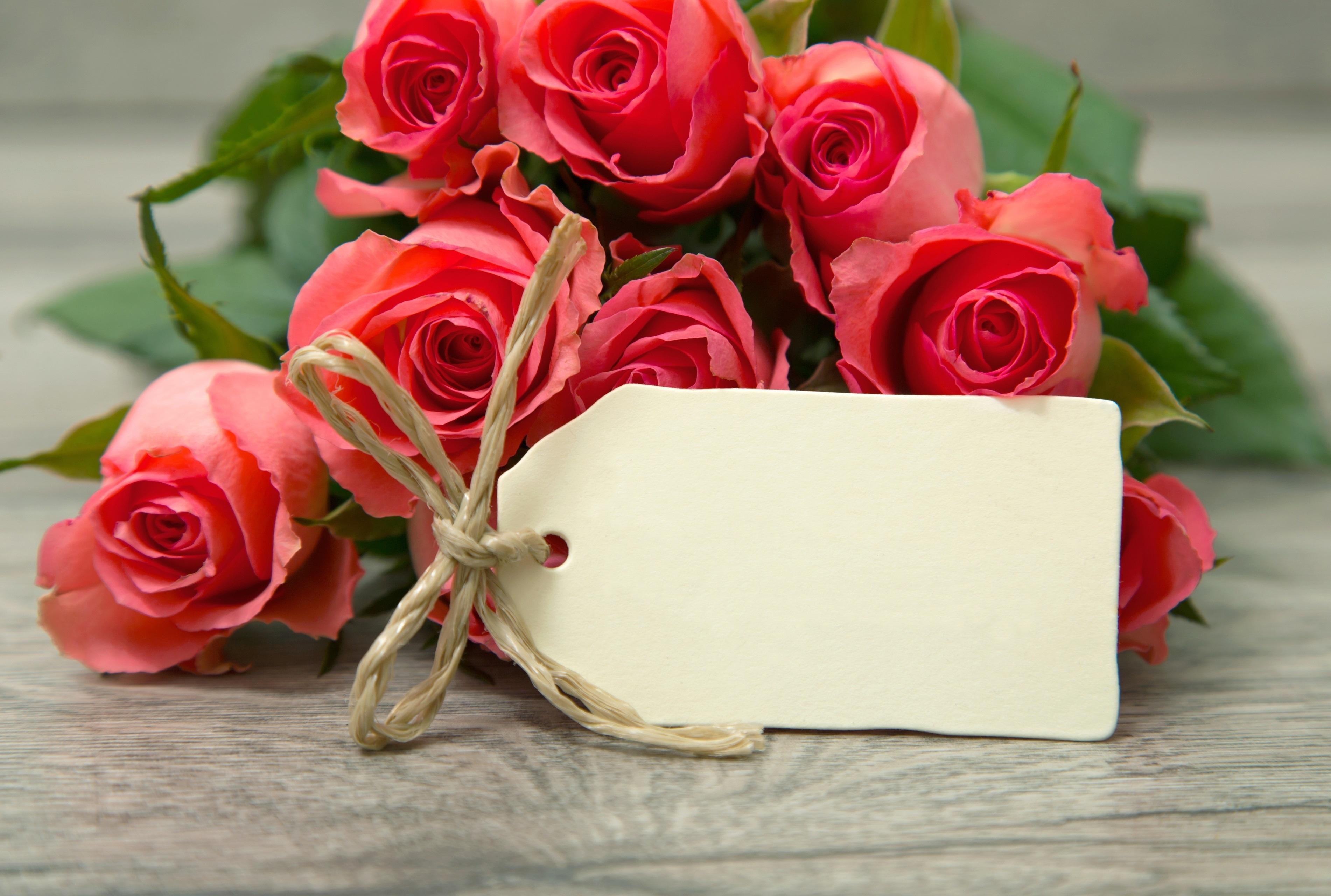 Розы с поздравлением картинки