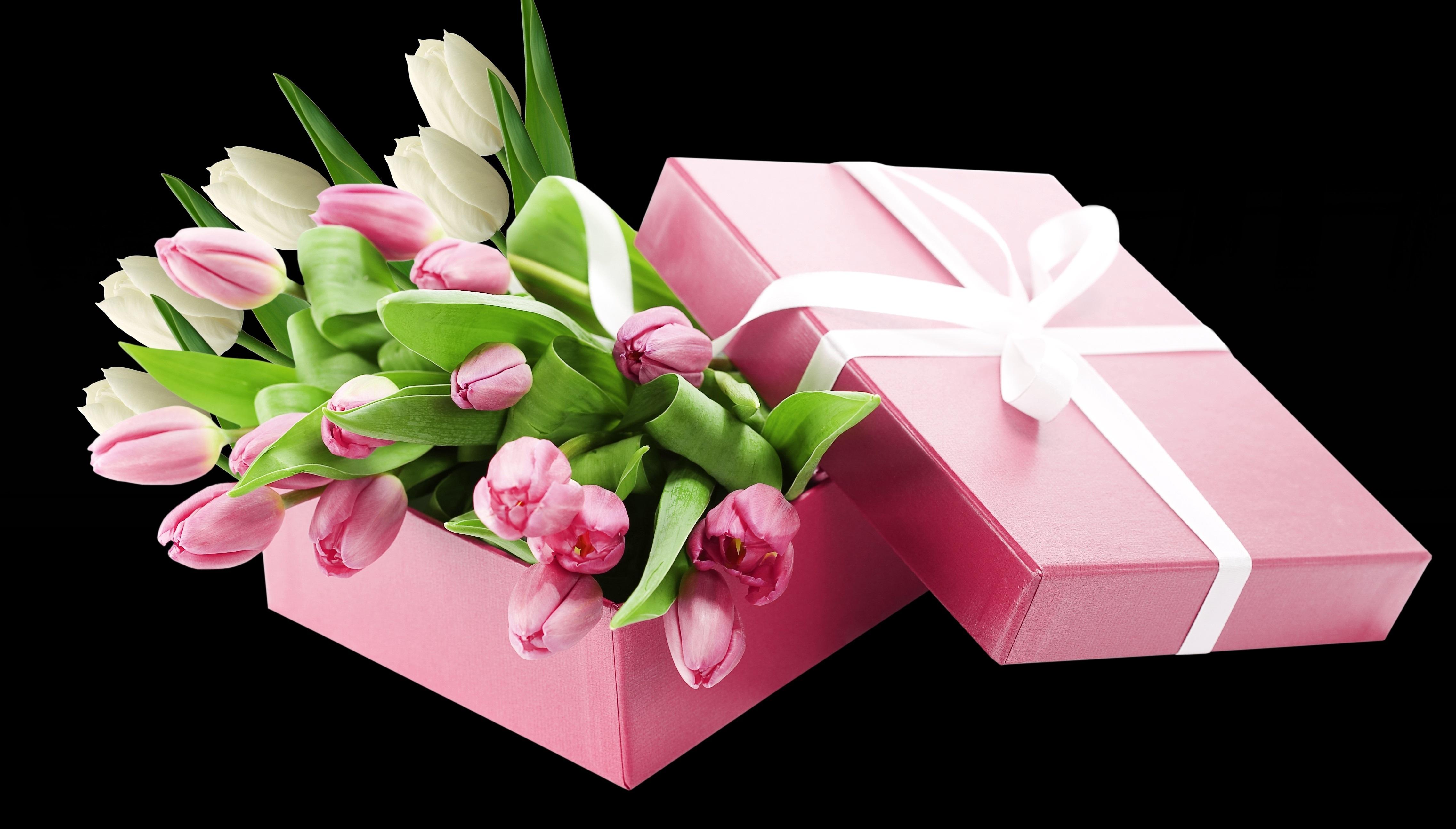 Открытка цветок в подарок, журналист московский кремль