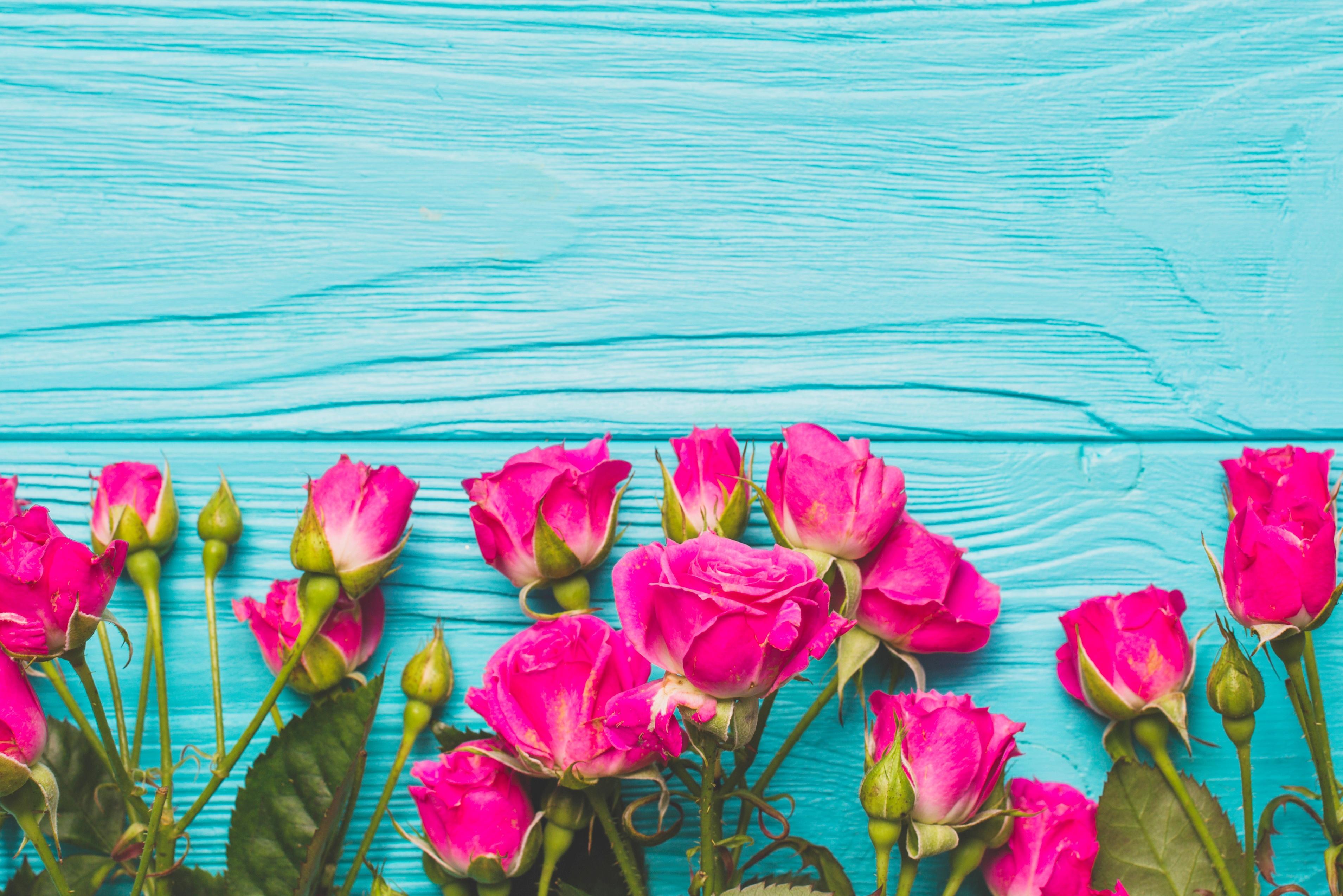 Картинки бирюза с розовым