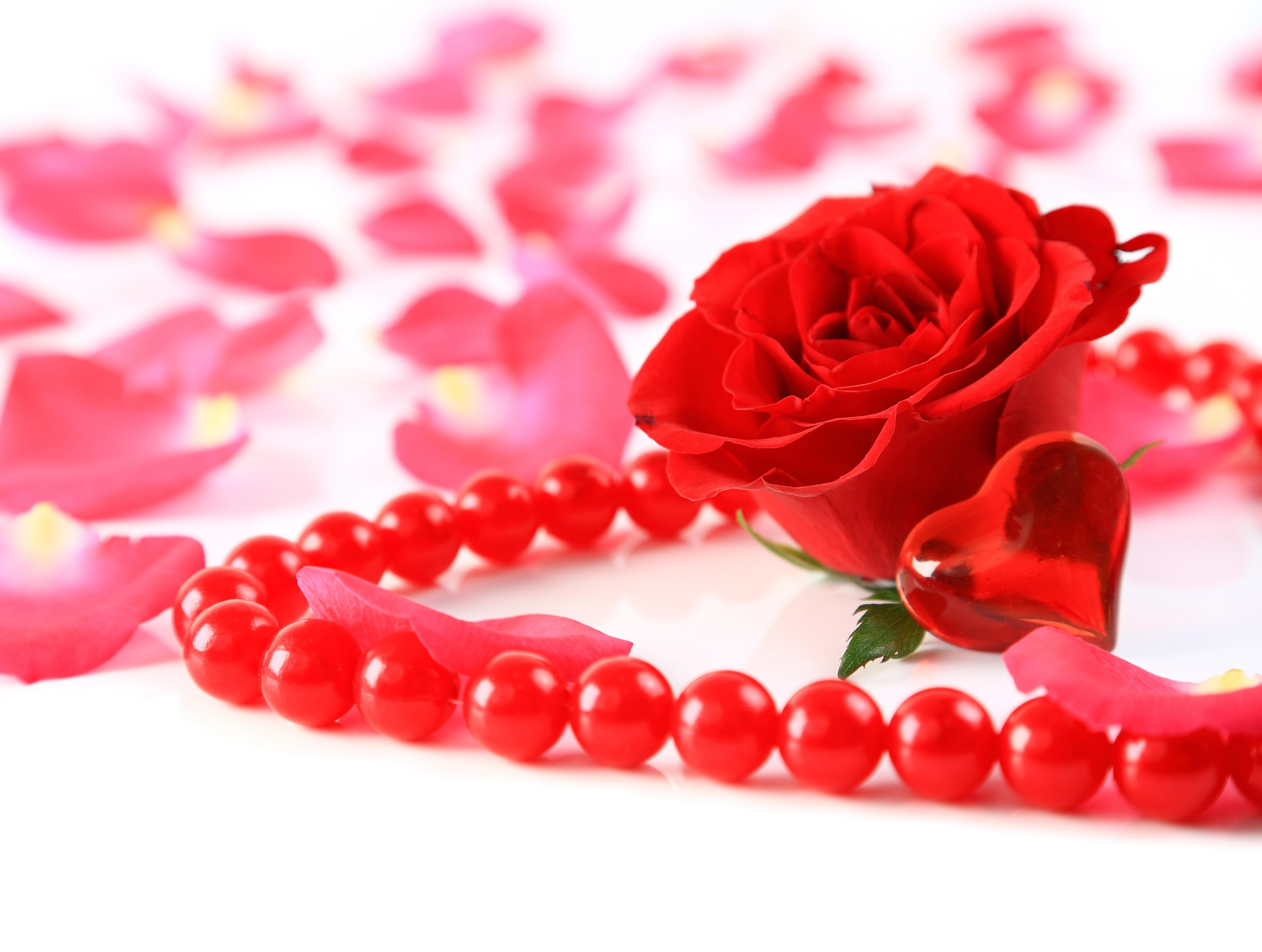 Мая, цветы сердца открытки