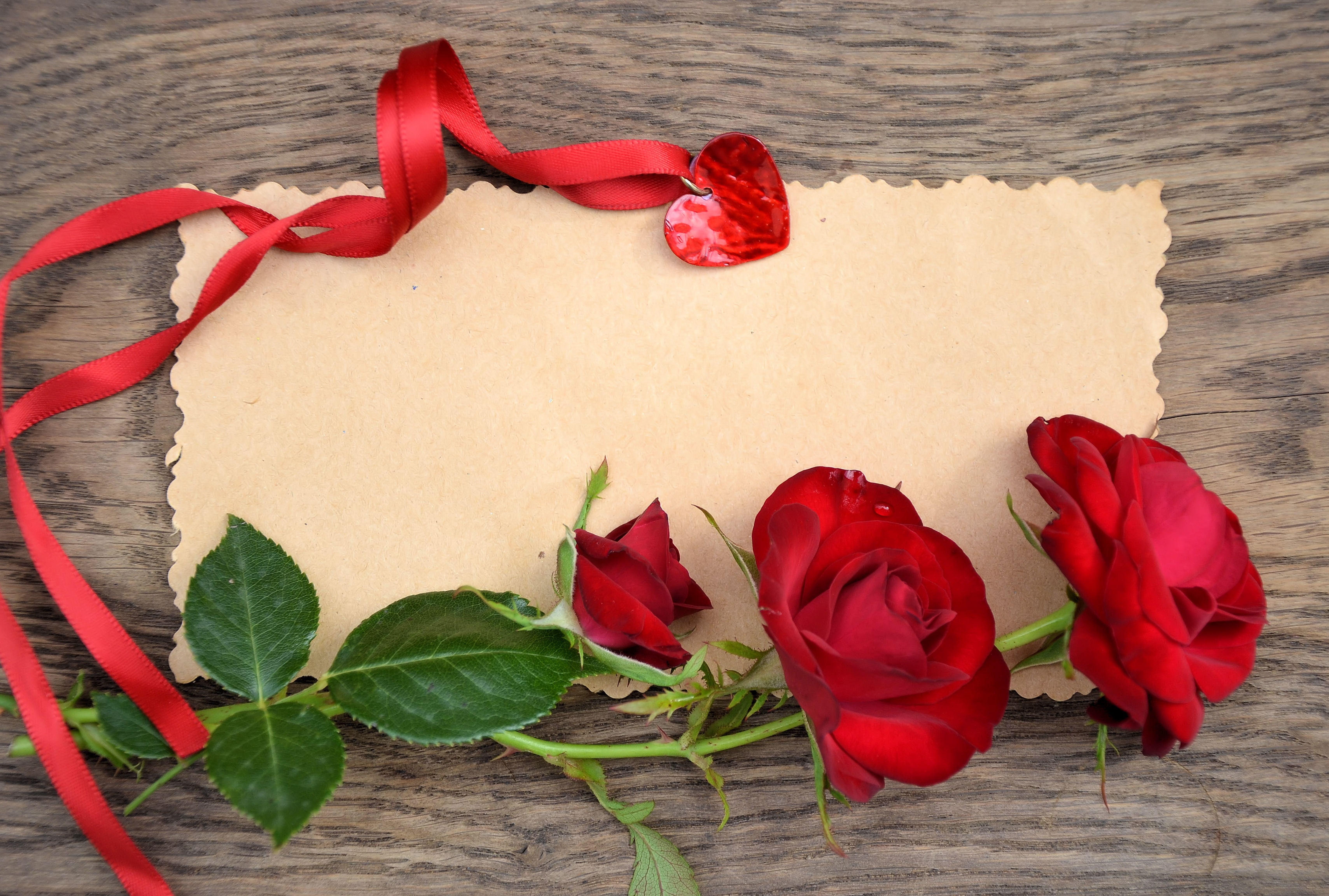 фотографии сердечек для поздравления луговая