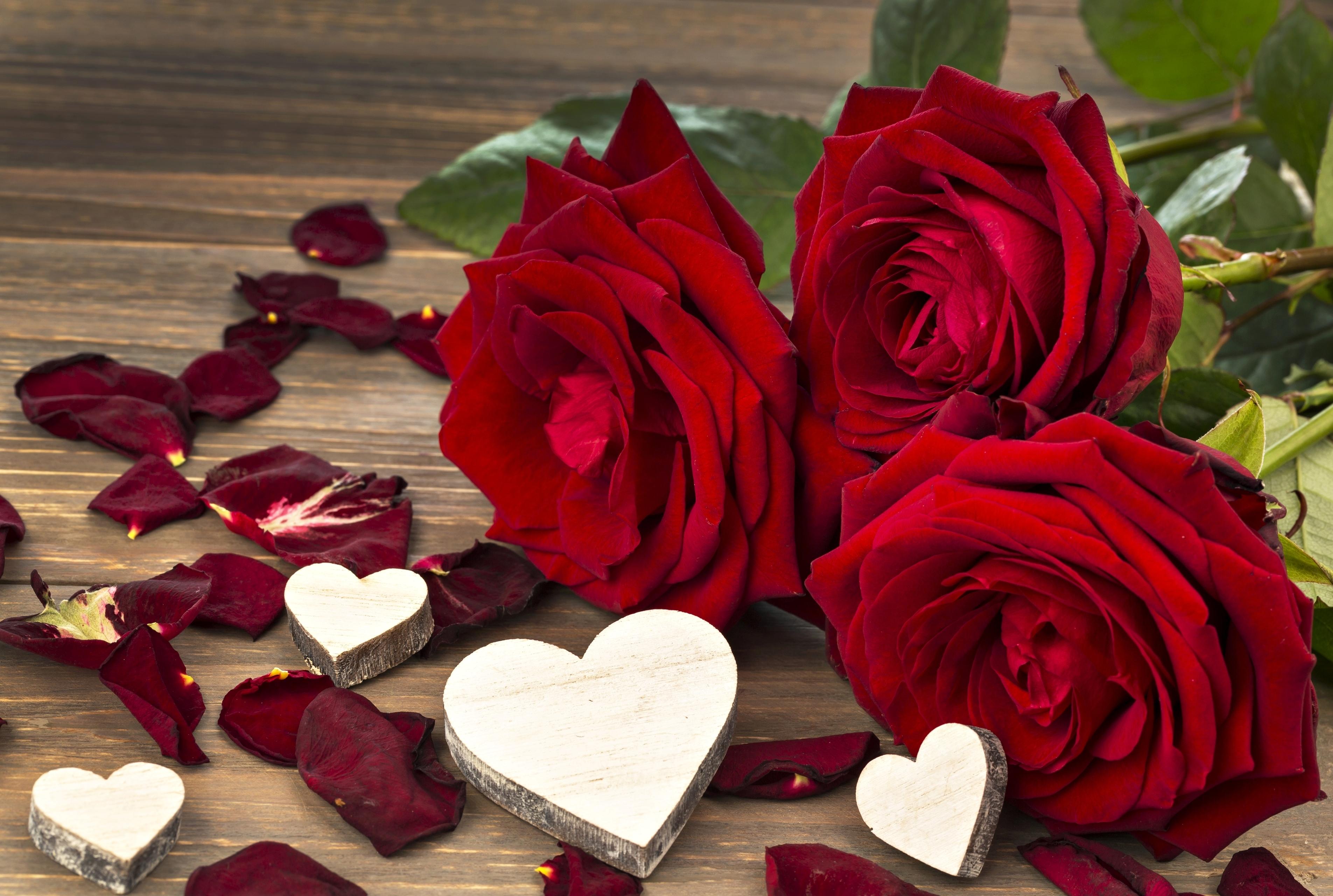 красивые сердечки и розы картинки можно