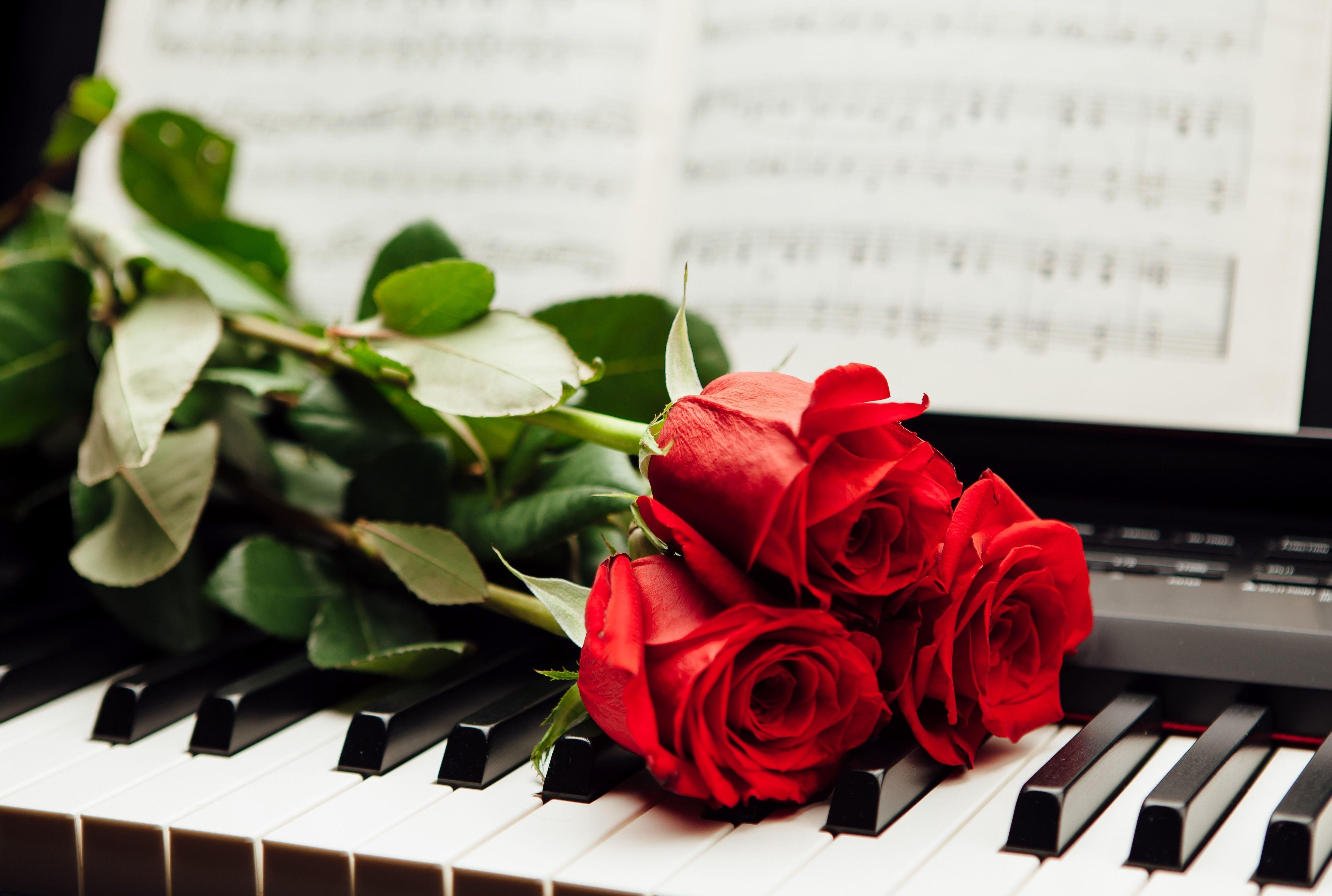 Картинка с клавишами и цветами