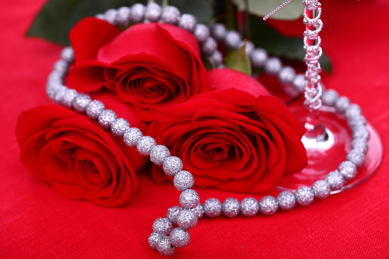 Картинки розы с жемчугом