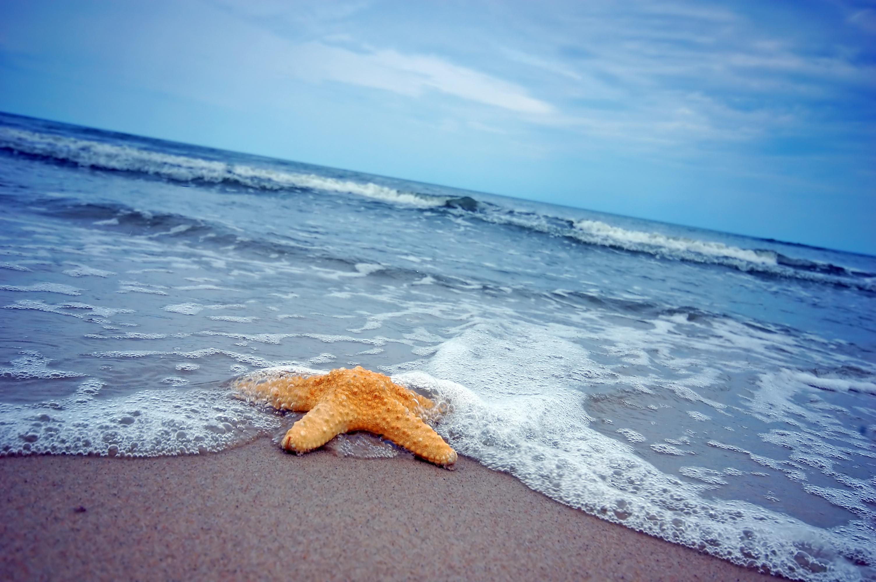 песок на берегу моря картинки тайланде можно