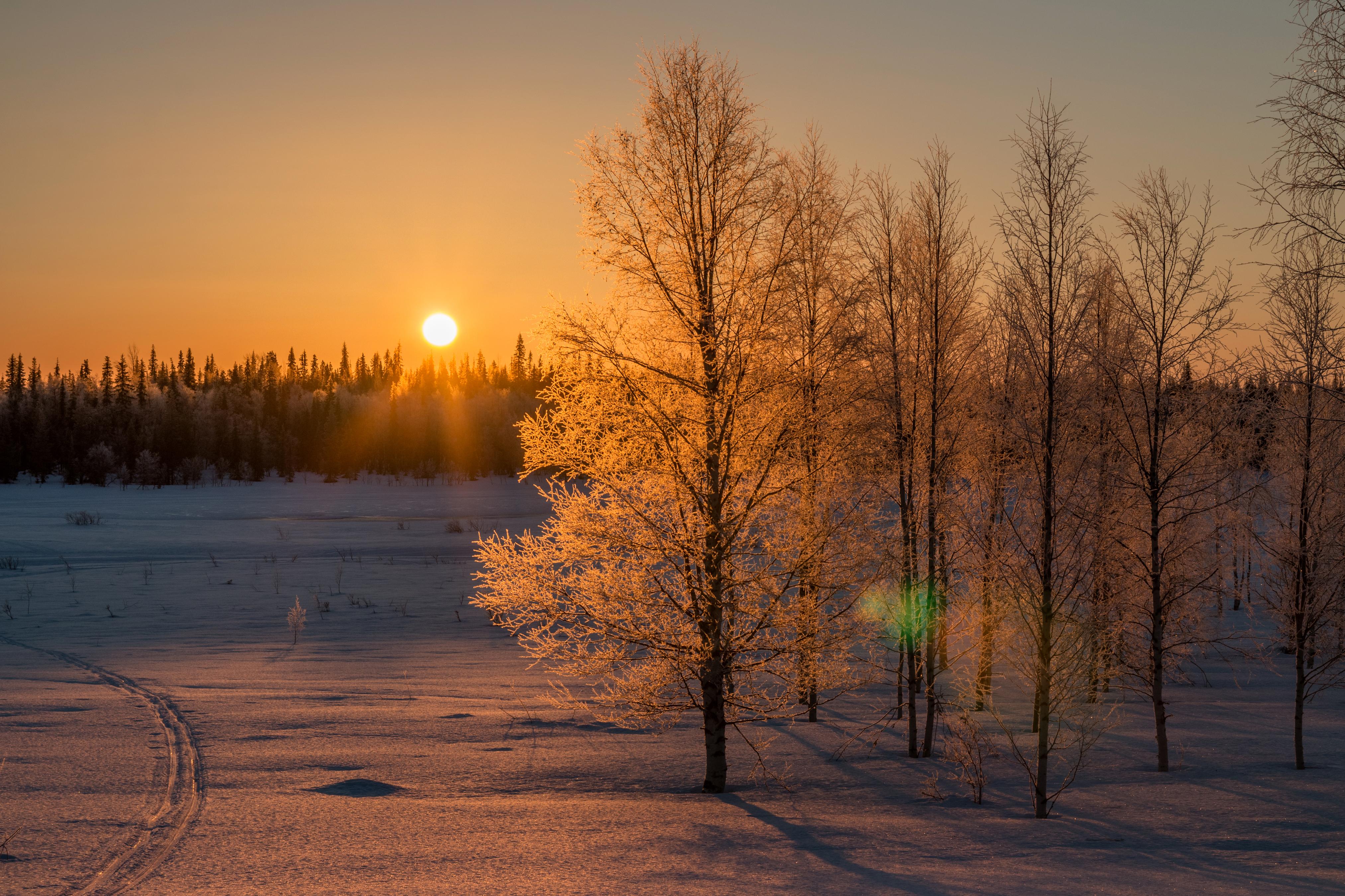 актриса восход зимой фото работала эрмитаже, пока