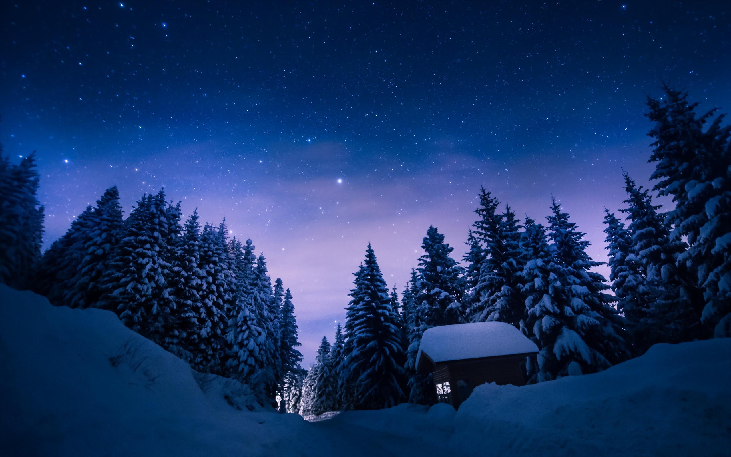 освященному архиерейскому картинки на рабочий стол ночная зима военную