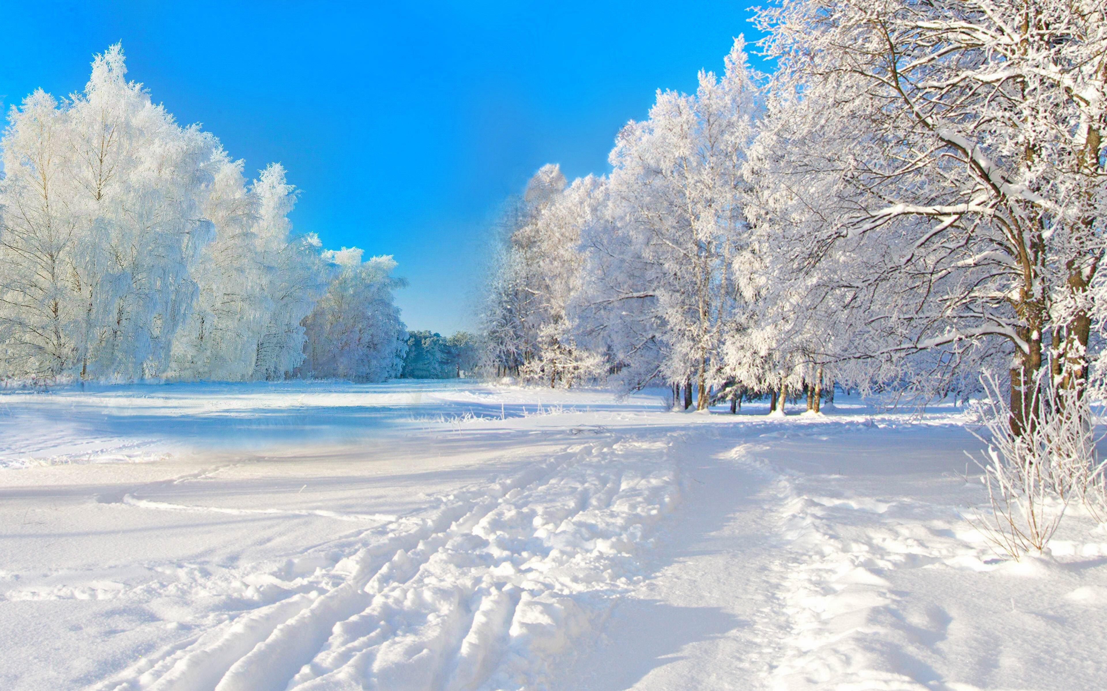 зимний пейзаж фото высокого разрешения бросилась нему