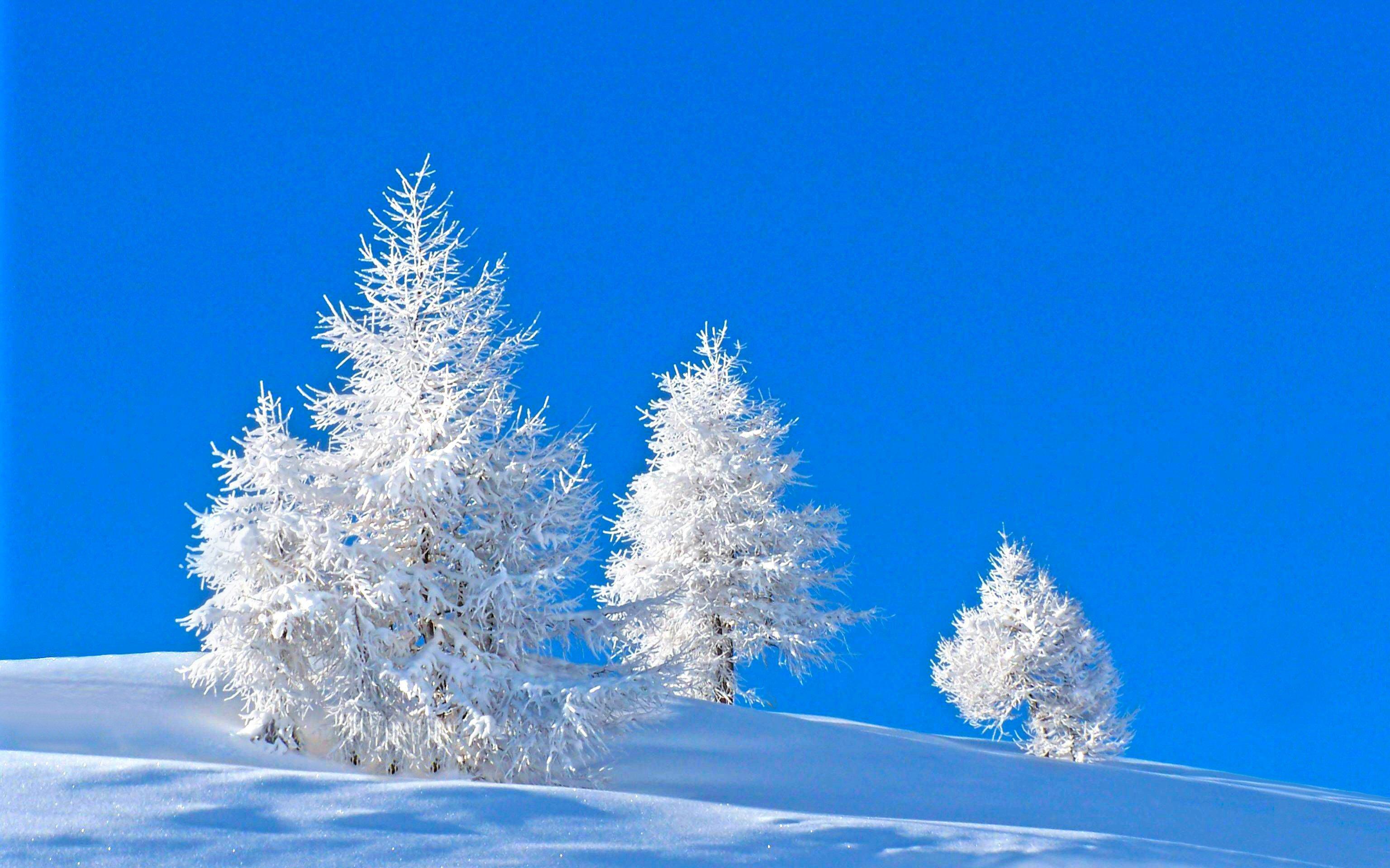 Зимние картинки на заставку компьютера
