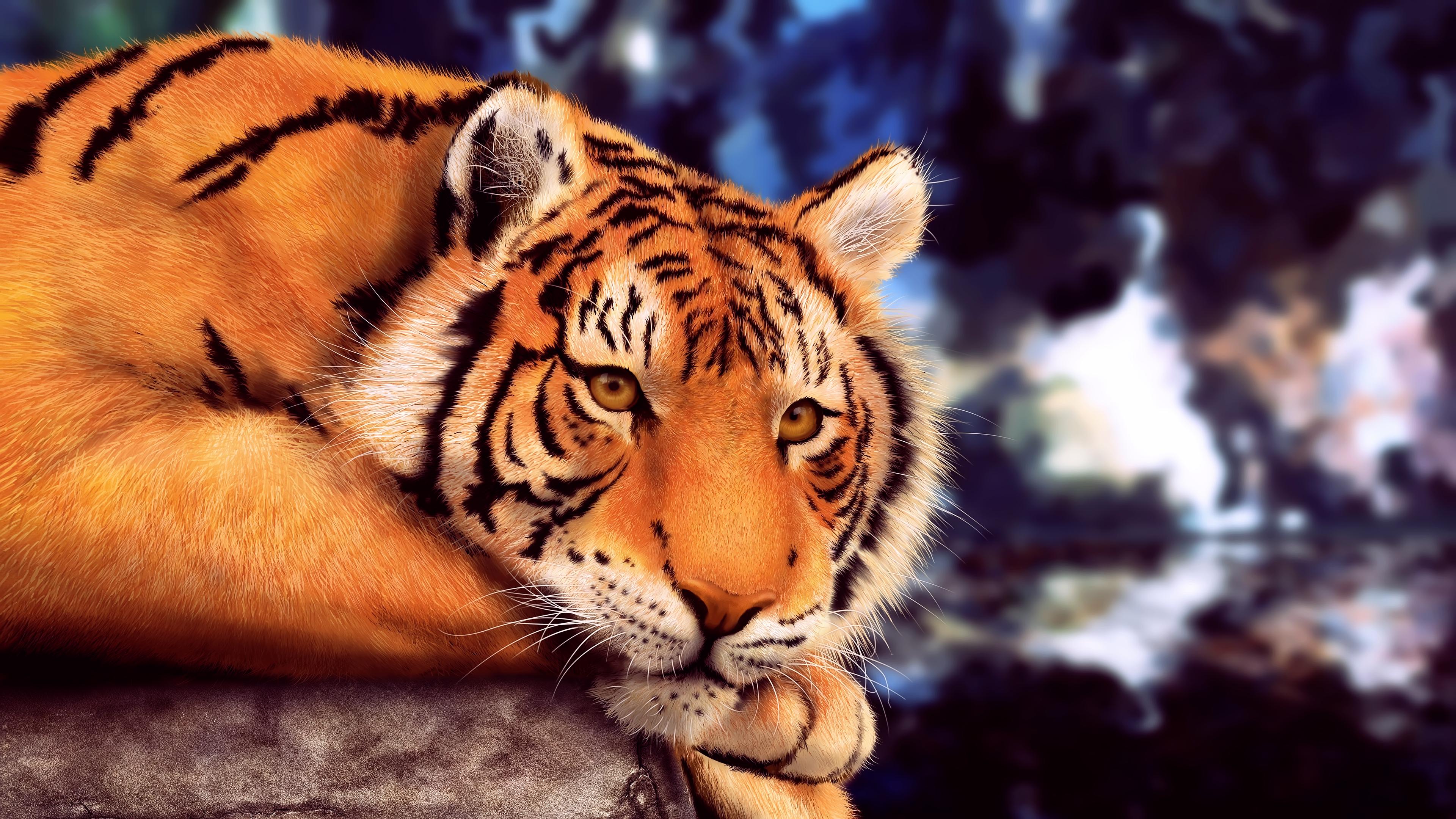Фото самых больших пород кошек выдаче разрешения