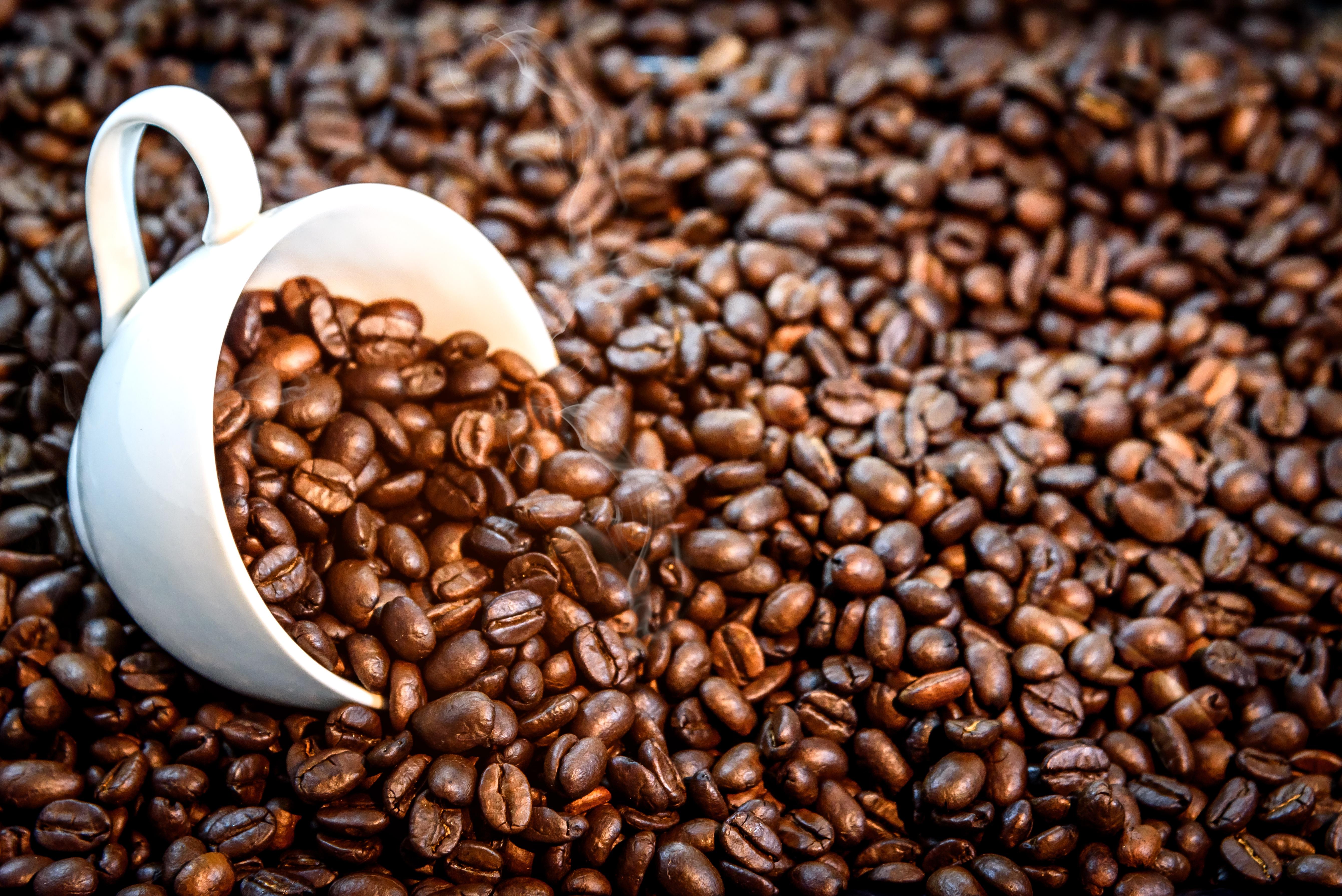 патологий картинка кофе зерна для рабочего стола сделал