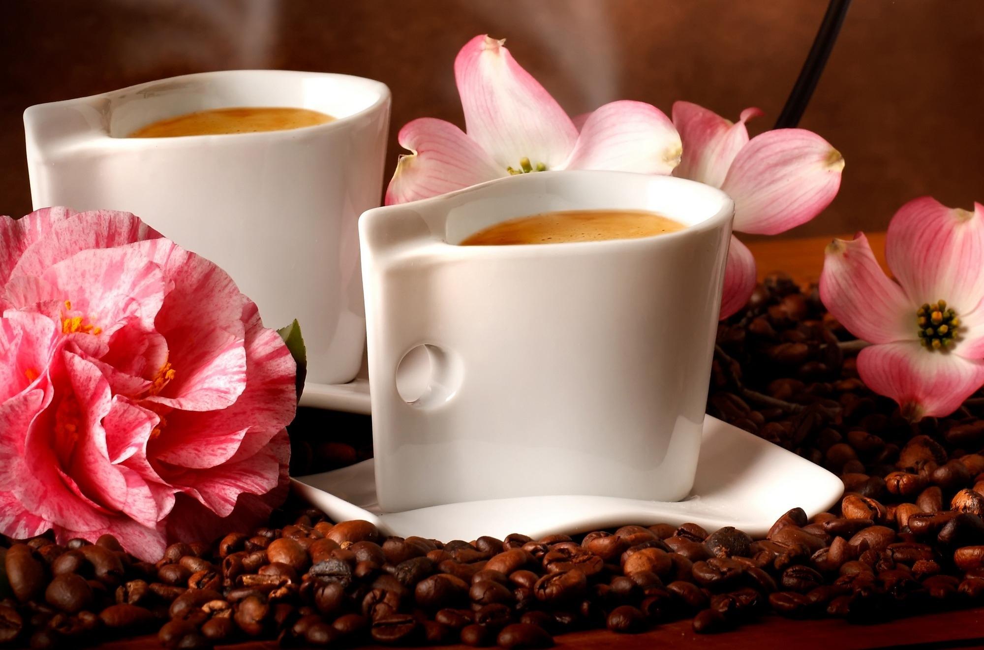 Картинки с утренним кофе и цветами, котята обнимаются открытки