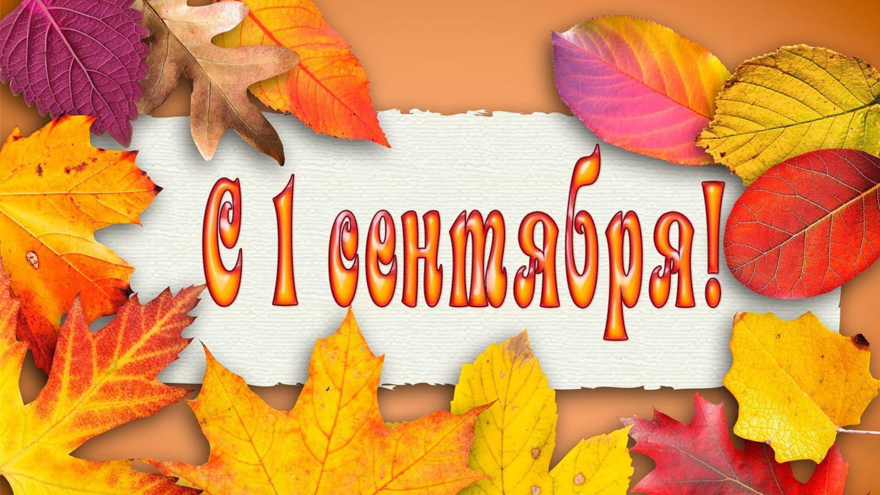 Открытка на 1 сентября учителю распечатать, цветочки открытку поздравления