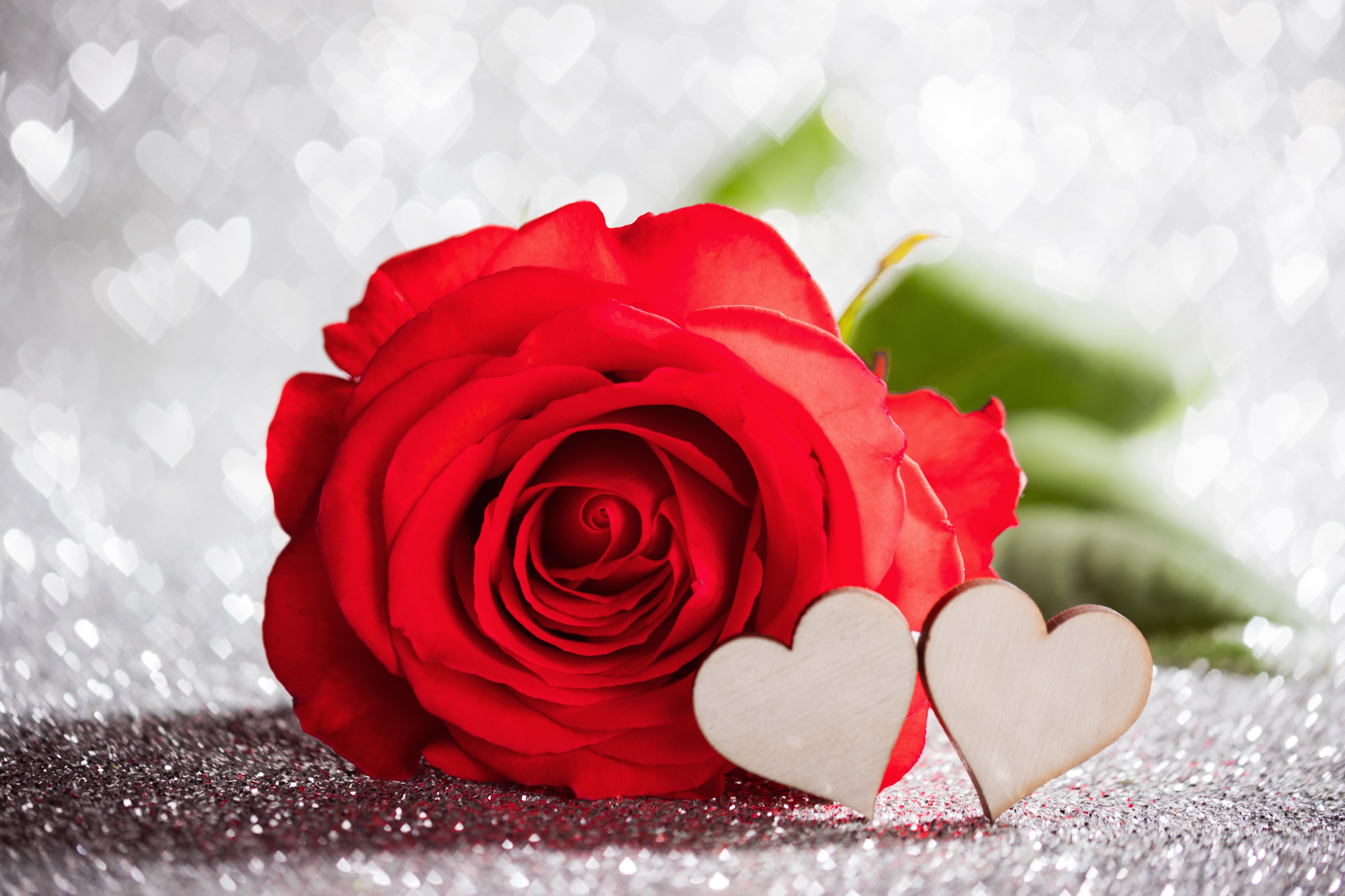 Картинки, картинки с сердечком и розами