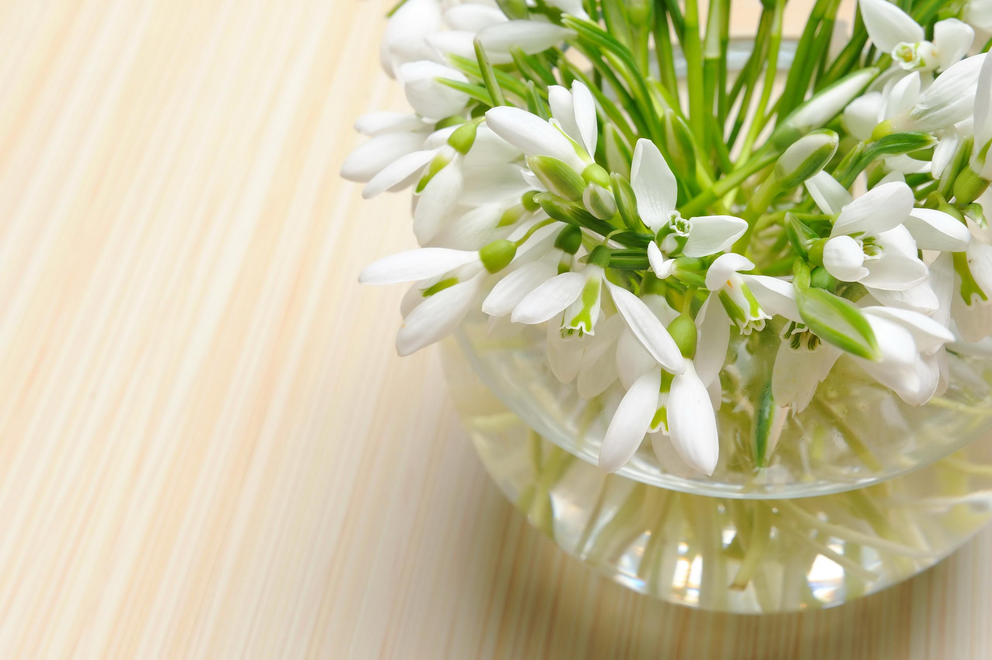Открытки с 8 марта нежные цветы
