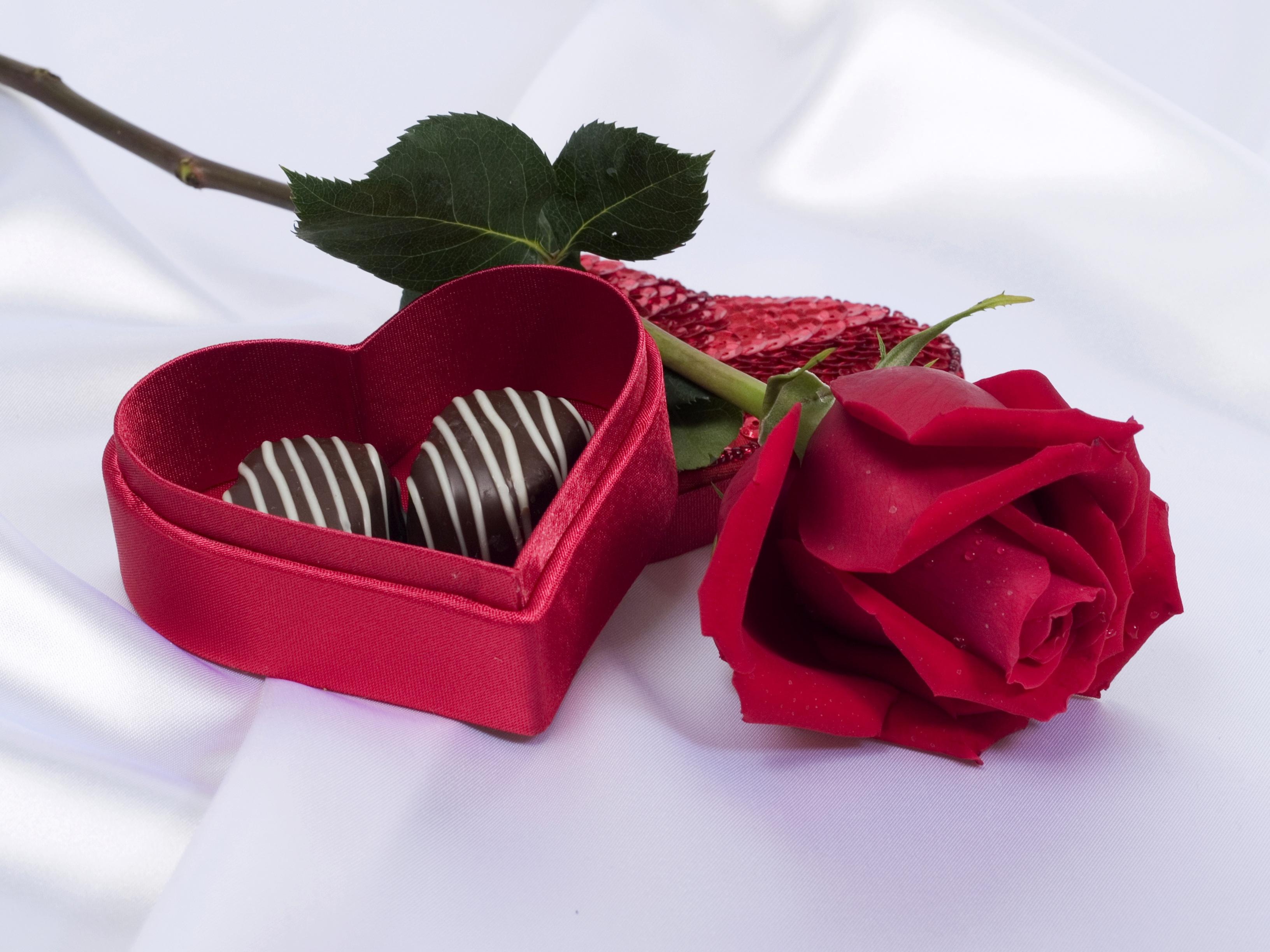 Для тебя цветок и шоколад открытки, открытки новому