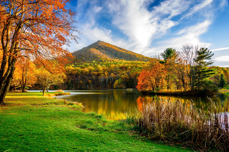 красивейшие картинки природа осень дерева для