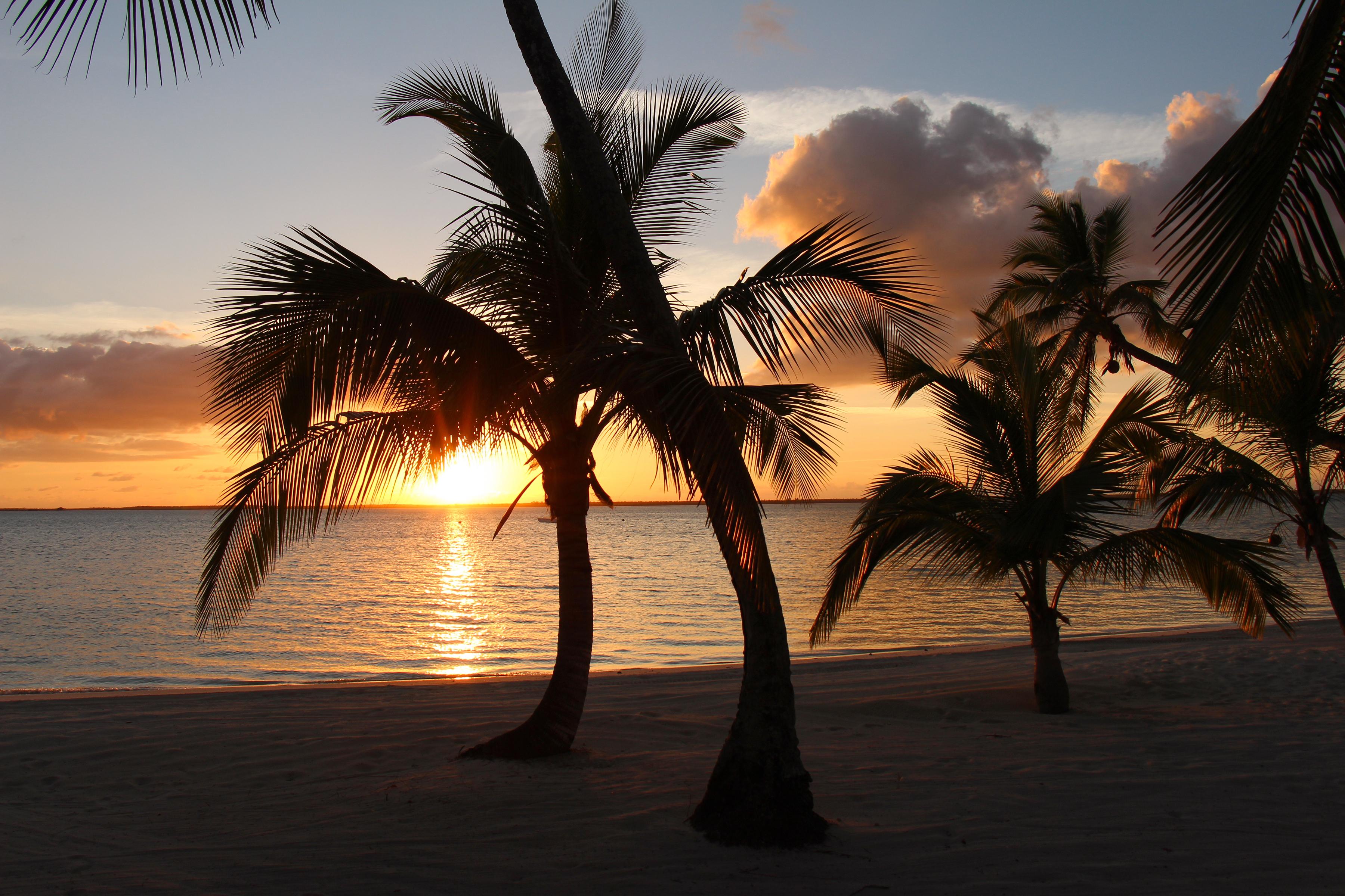 здесь картинки песок вода пальмы белая церковь чёрными