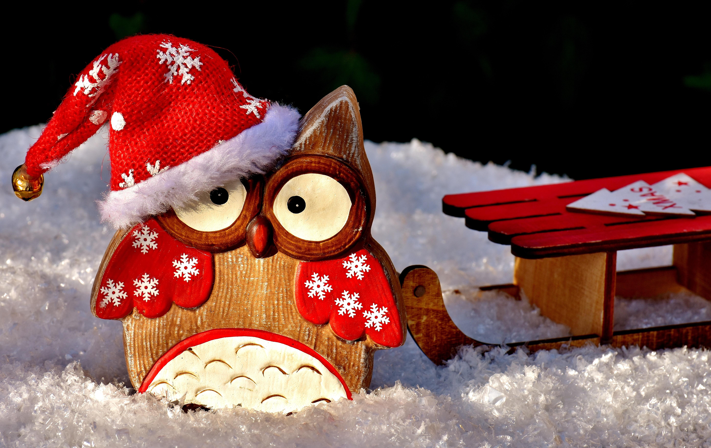 Новогодние картинки с совой на рабочий стол