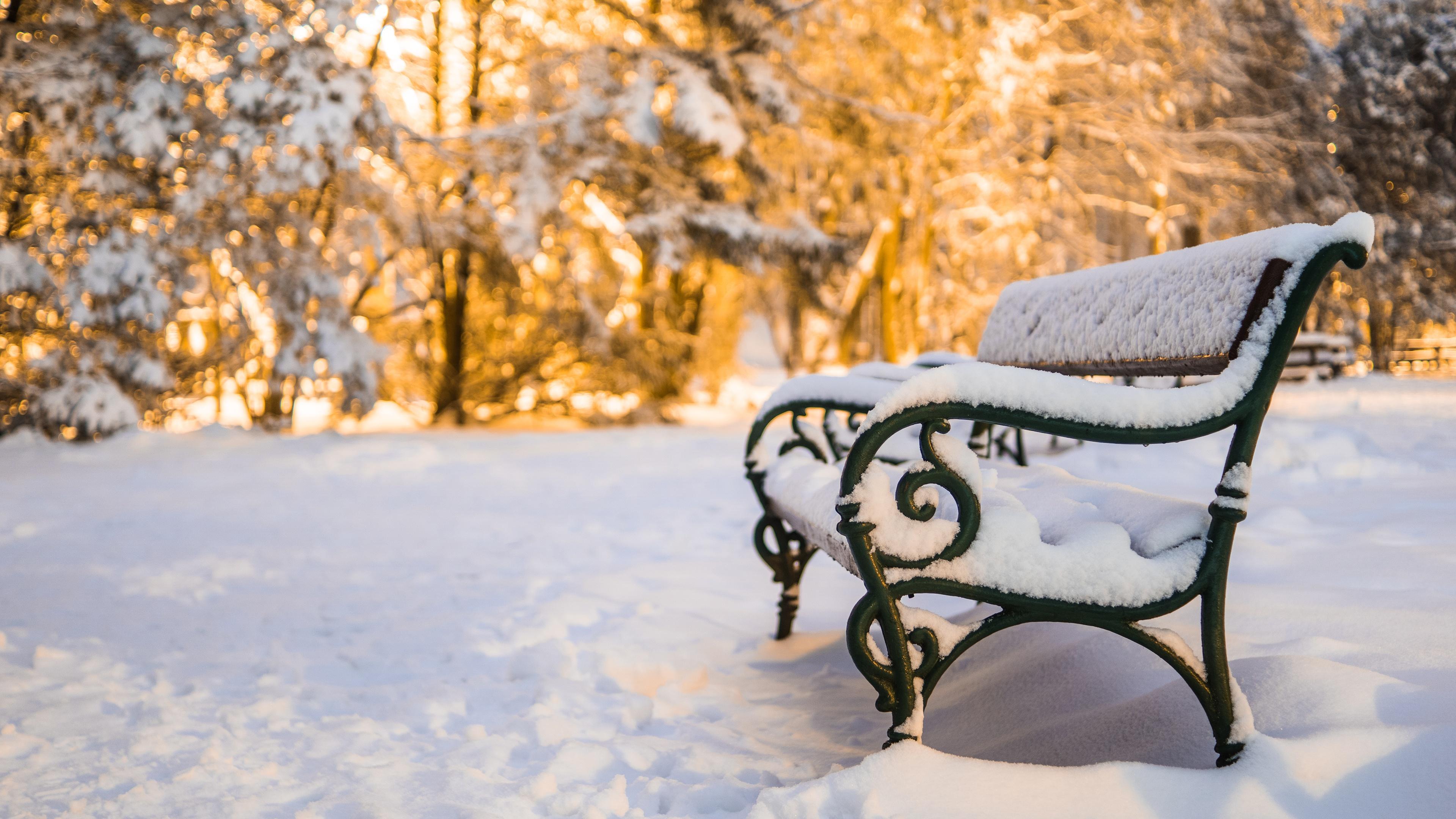 отличается скамейка под снегом картинки частности