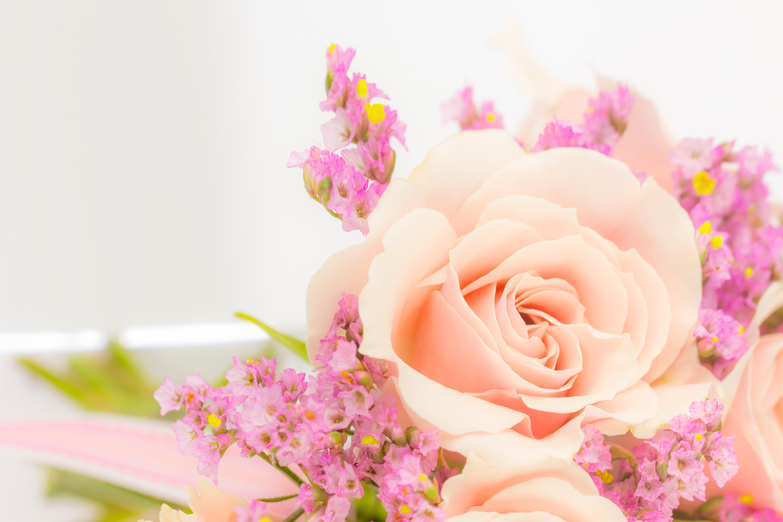Открытки с нежными цветами для женщины