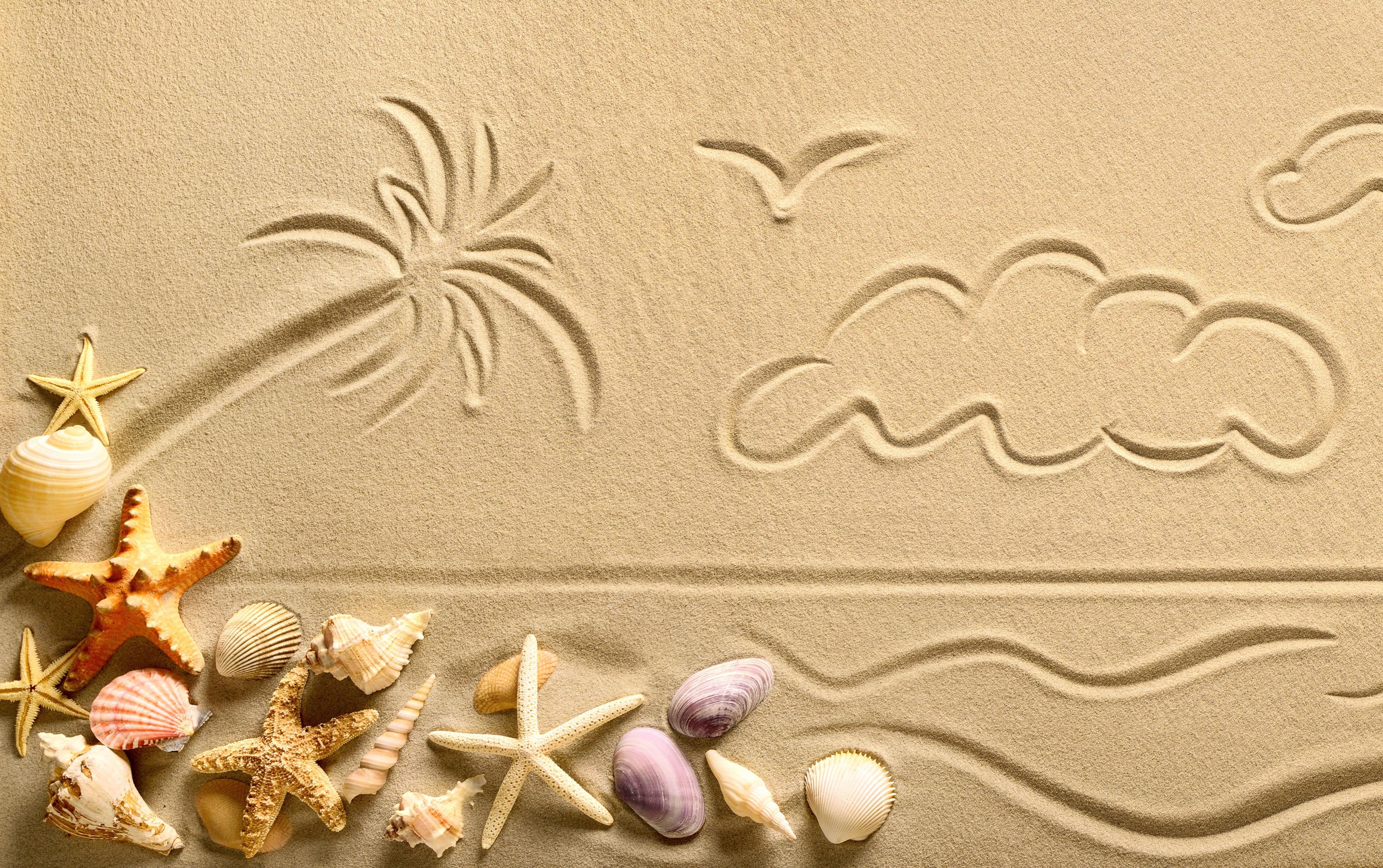 молчали картинки с песком и ракушками есть одно событие