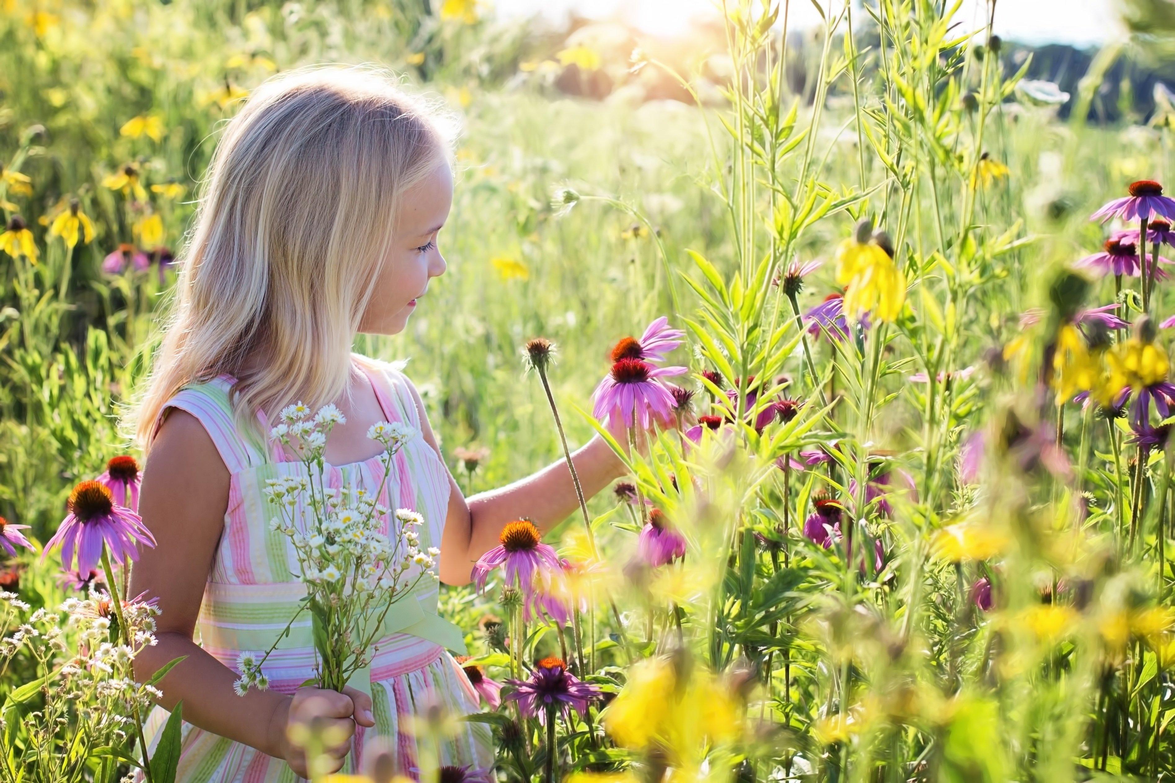 Ребенок на лугу картинки